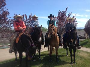 Photo 2014 horse expo, courtesy of ABHA