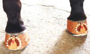 Turkey Hoofies