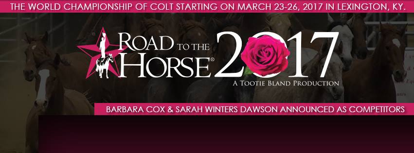 Road to the Horse 2017