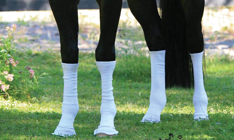 Sox for Horses Legs flies