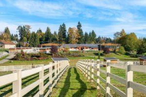 Maria Danieli Pumpkin Farms 17732 Butler Rd Snohomish, WA