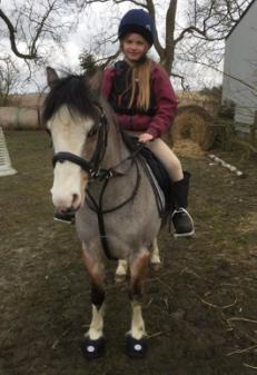 The Cavallo Hoof Boot