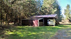 Lynn Bowlen 12715 Silver Creek Dr SE Tenino, WA 98589