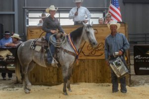 September 7 and 8thof 2018, The League of Legends InvitationalHorse Sale hosted by Turner Performance Horses held their 2ndannual select sale.