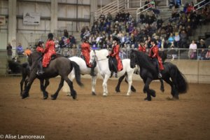 The Northwest Horse Fair and Expo will celebrate its Twentieth Anniversary