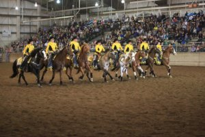 Northwest Horse Fair and Expo 2019