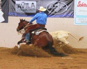 Idaho Horse Expo