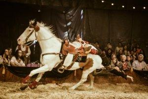 Cirque Ma'Ceo Cavallo Equestrian Arts