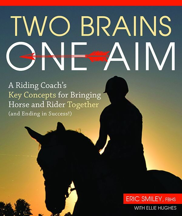 Media Barn: Book Review – Two Brains, One Aim